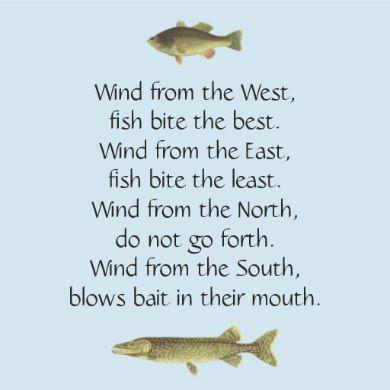 Fly Fishing Reels - Consider A Few Of These Great Fishing Tips! Sea Fishing, Carp Fishing, Saltwater Fishing, Fishing Reels, Fishing Tackle, Fishing Rod, Fishing Games, Fishing Videos, Fishing Pliers
