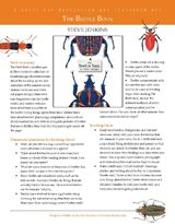 """Draw students into the beetle word with this teacher's guide to """"The Beetle Book"""" by Steve Jenkins. This printable classroom guide includes discussion questions for reading aloud, teaching ideas for the book, and a beetle project that can be adapted for use with primary or upper grade students. (Pre-K to 8th Grade)"""