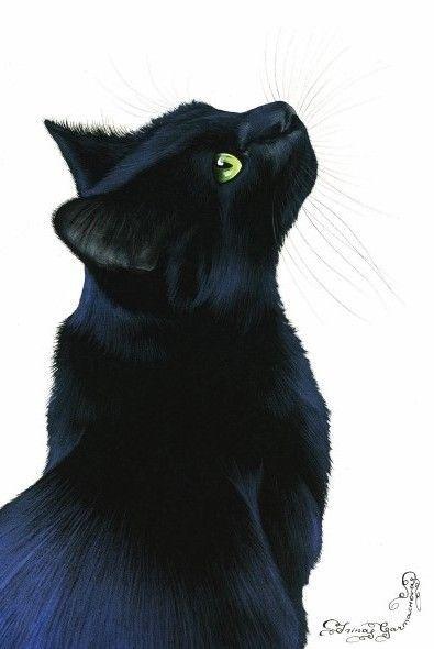 Cat Greeting Card Black Cat Elegance Art by Irina Garmashova