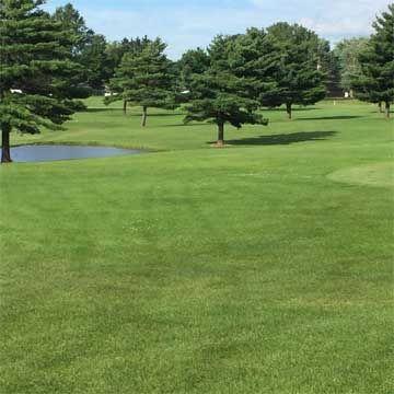 33+ Bear creek golf medford information