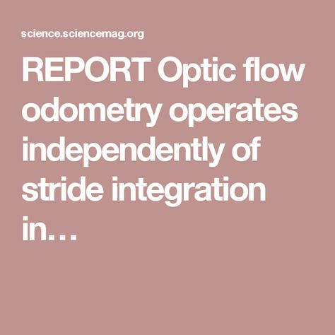 REPORT Optic flow odometry operates independently of stride integration in…