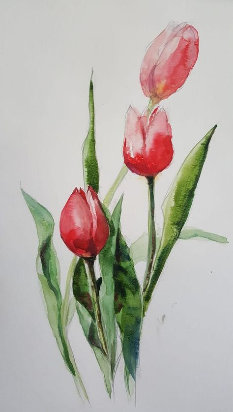 Tulpen Original Aquarell In 2020 Aquarellmalerei