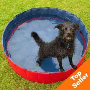 Doggy Paddling Pool Your Dog Dog Toys Dog Training