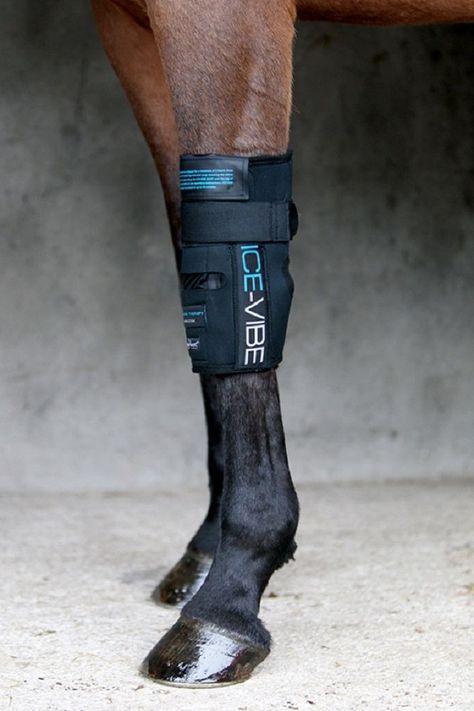 Horseware Ice Vibe Circulation Therapy Knee Wrap Massage Injuries Strain DBHK32…