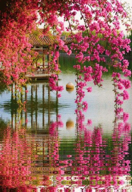 So Beautiful Nature Scenery In 2021 Beautiful Nature Colorful Landscape Beautiful Nature Wallpaper Beautiful wallpaper gif images