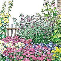 Balkonkasten-Set \'Feurige Mischung\' (Pack./6 Pflanzen) günstig ...