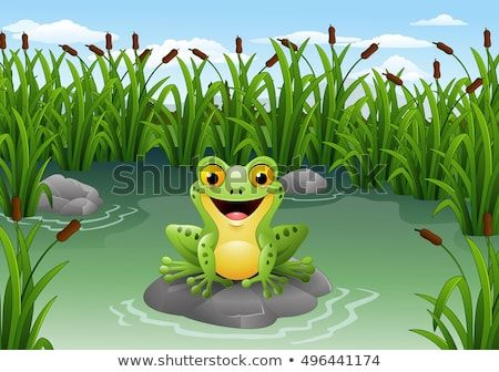 Cartoon Frog Sitting On The Rock At Pond Pond Painting Plant Cartoon Forest Cartoon
