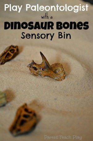 Play Paleontologist: Dinosaur Bones Sensory Bin from Parent Teach Play