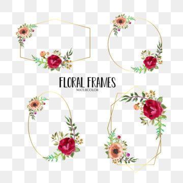 مجموعة إطارات الزفاف المائية الجميلة زهري زهرة حفل زواج Png والمتجهات للتحميل مجانا Wedding Frames Frame Collection Floral