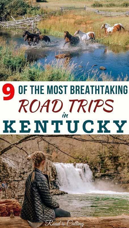 500 Kentucky Ideas Kentucky My Old Kentucky Home Kentucky Girl
