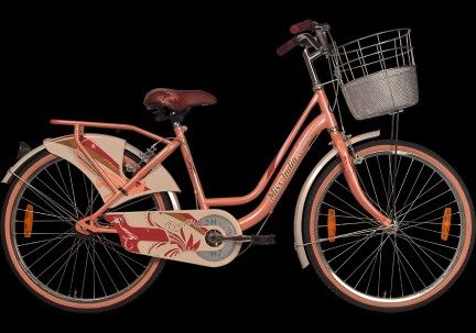 Buy Bicycle Online In India From Buy 24x7 At The Affordable Price