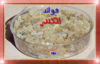 فوائد اللبان الذكر الكندر Food Blog Blog Posts