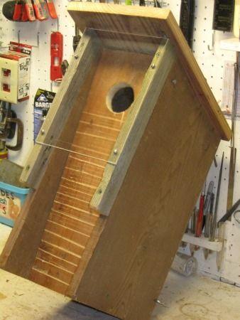 infrared camera 32mm bird nest box | cj wildlife (uk) | nest boxes