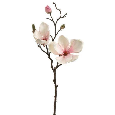 Magnolia Spray in Blush Pink