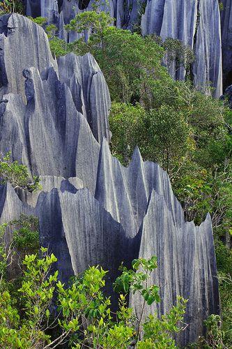 Pinnacles Gunung Api Gunung Mulu National Park Sarawak Malaysia 3 Gunung Mulu National Park National Parks National Park Tours