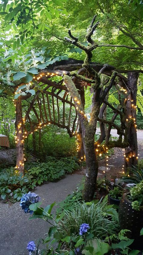 Molly Ward Gardens in Washington - you'll feel like you're in a fairy tale when you have a meal here. Garden Arbor, Garden Doors, Garden Path, Woodland Garden, My Secret Garden, Secret Gardens, Garden Structures, Washington State, Poulsbo Washington