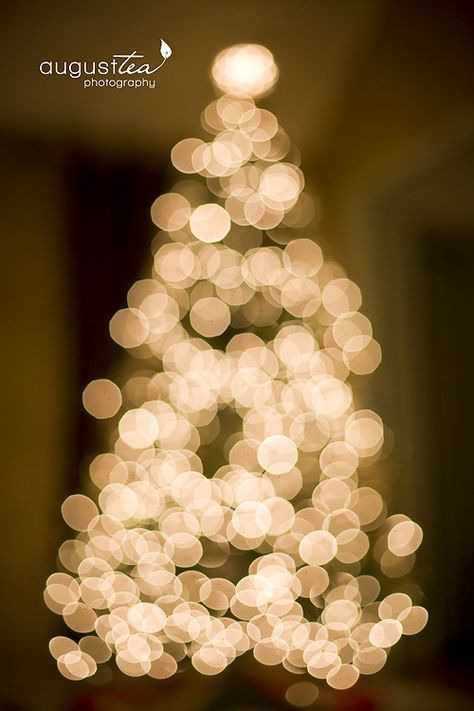 How to take pictures of your Christmas Tree (p camera settings as well)