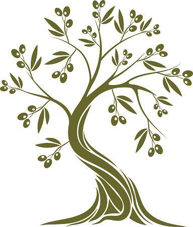 Olive Tree Vector Art Illustration Tree Tree Illustration Olive