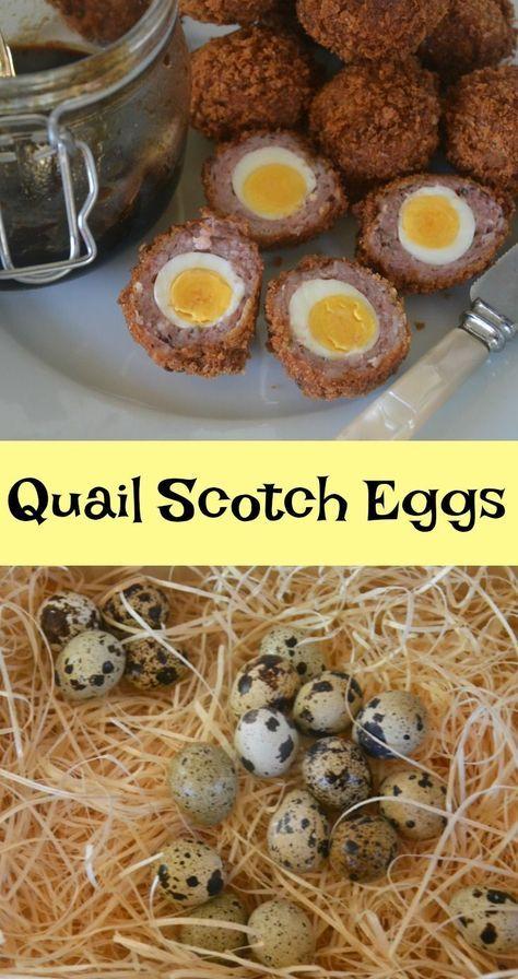 03a58c2562e74556e36aab86b02fd238 - Scotch Eggs Better Homes And Gardens
