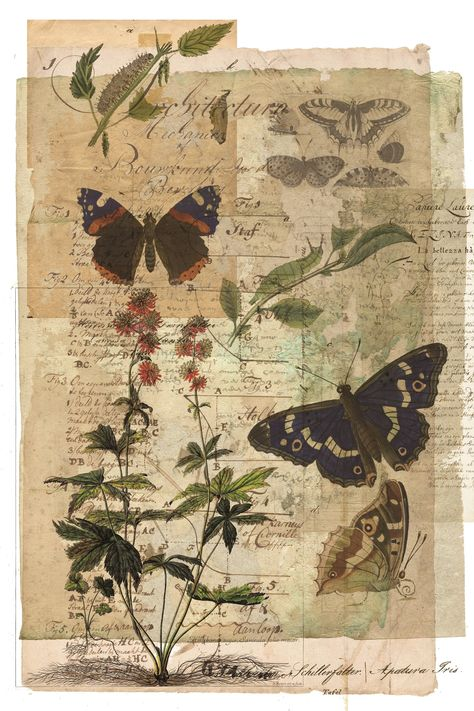 Butterfly Collage Print-No.0102