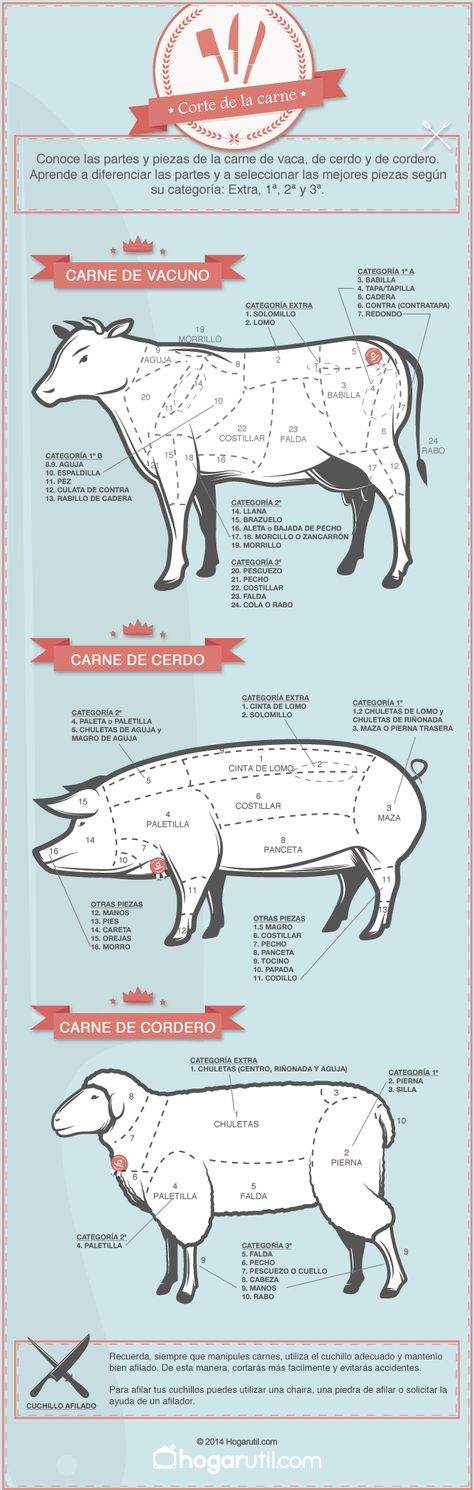 Infografía sobre el corte de la carne de vaca, cerdo y cordero #infografia