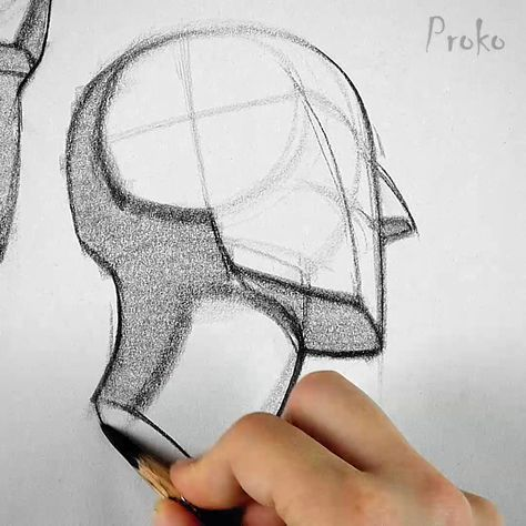 Need help drawing the neck? Here are some simplified examples to help you out. Full lesson at proko.com/141 #drawingtutorial #artlesson #sketching