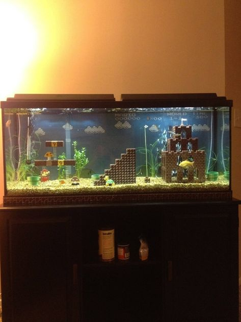 Super Mario fish tank! Funny & cute!