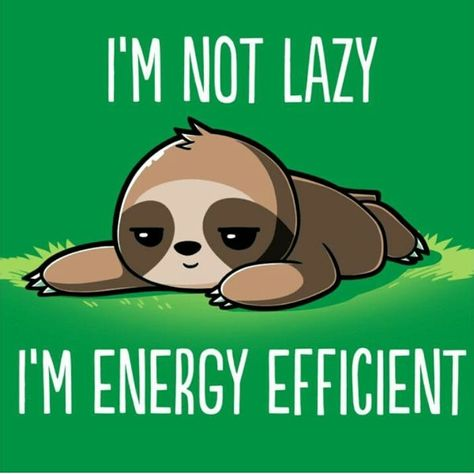 #funnymemes #funny #memes #true #lazy #sloth This is so me...