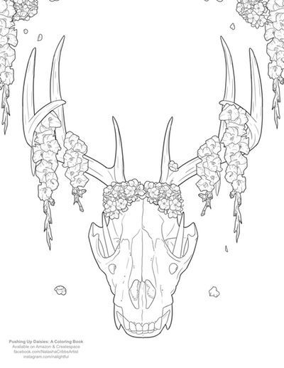 Free Coloring Pages Cleverpedia S Coloring Page Library Skull Coloring Pages Stitch Coloring Pages Cute Coloring Pages