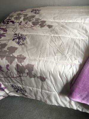 Living Colors Janet Floral Purple Queen 12 Piece Reversible Comforter Set Big Lots Comforter Sets Queen Comforter Sets Comforters