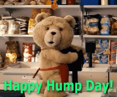 Happy Hump Day Wednesday GIF - Ted HumpDay TeddyBear - Discover & Share GIFs