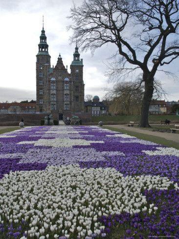 Rosenborg Slot Castle with Crocus in Bloom