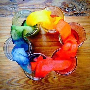 Absorption Color Wheel Revisited Kindergarten Science Activities