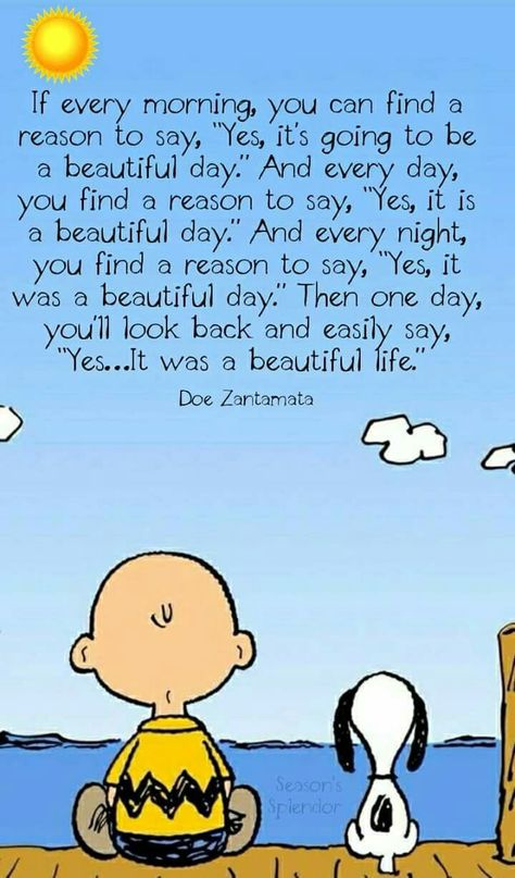 2769 Best Snoopy And Charlie Brown Snoopy Zitate