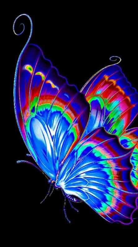 Butterfly Ringtones And Wallpapers Free By Zedge Butterfly Wallpaper Iphone Butterfly Wallpaper Backgrounds Pretty Wallpaper Iphone