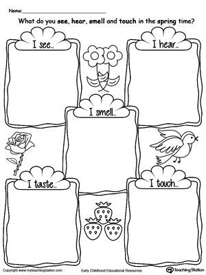 The Five Senses In The Spring Time Five Senses Worksheet Five Senses Kindergarten 5 Senses Worksheet