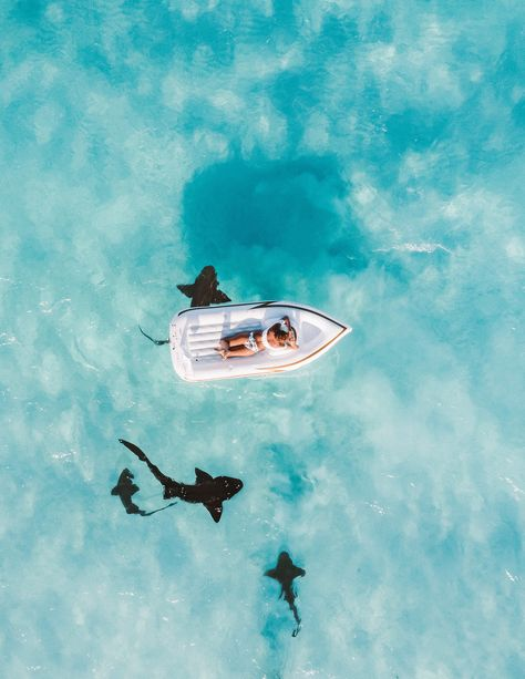 Check out this list of the top family resorts in Nassau, the Bahamas, for your next visit to this enchanting city. George Town, Beach Aesthetic, Summer Aesthetic, Quote Aesthetic, Les Bahamas, Nassau Bahamas, Bahamas Beach, Ocean Beach, Bahamas Island