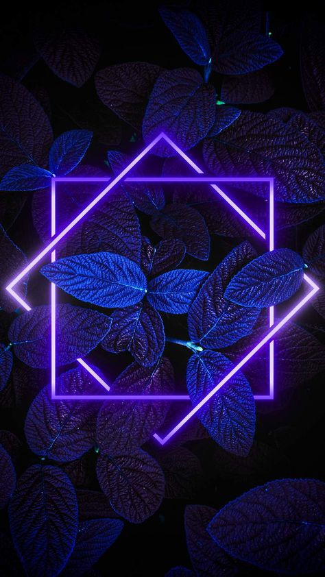 Dark Nature Neon Light iPhone Wallpaper - iPhone Wallpapers
