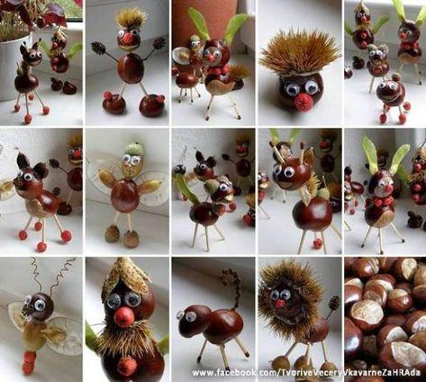 DIY-chestnut-animations-1