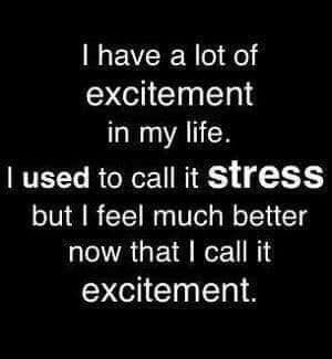 Stress Excitement Stress Quotes Funny Work Quotes Funny Work Stress Quotes