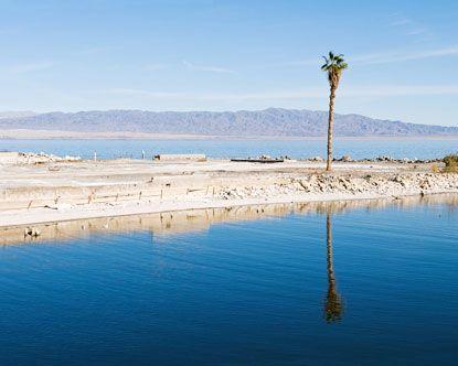 Salton Sea Palm Springs California California Golden State Pinterest Palm Springs California Palm Springs And Palm
