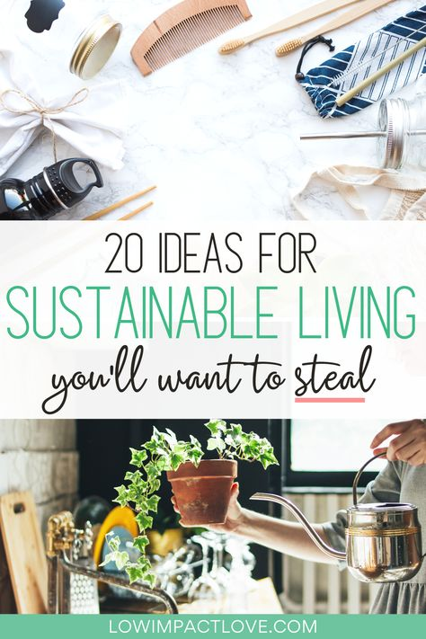 20 Sustainable Living Ideas You Need to Steal