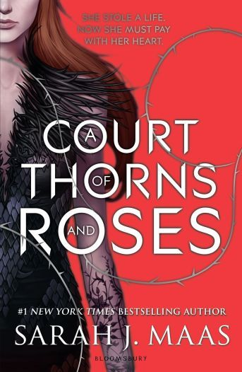 12 More Ya Books Similar To Shadow And Bone Trilogy By Leigh
