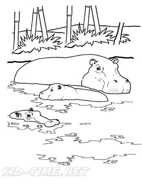 Free Coloring Book Pages Printables Realistic Hippopotamus Hippo Coloring Book Page Animal Coloring Pages Coloring Pages For Kids Coloring Books