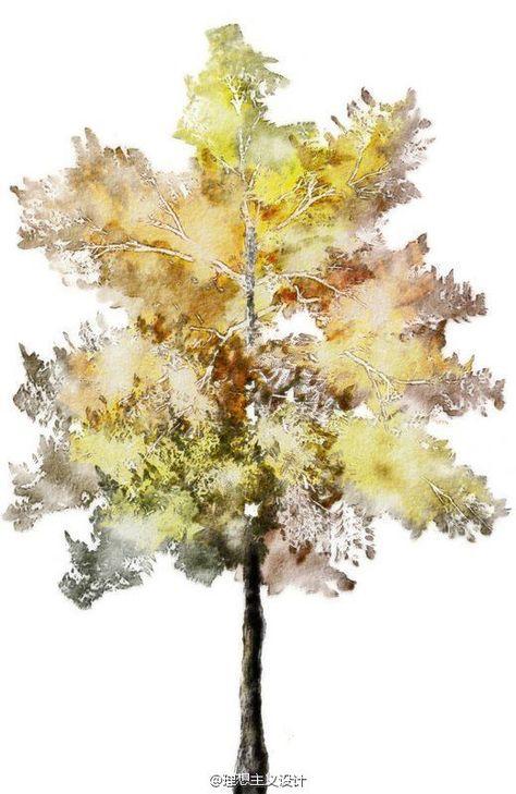水彩风格的手绘树3 Wasserfarben Baume Aquarell Architektur