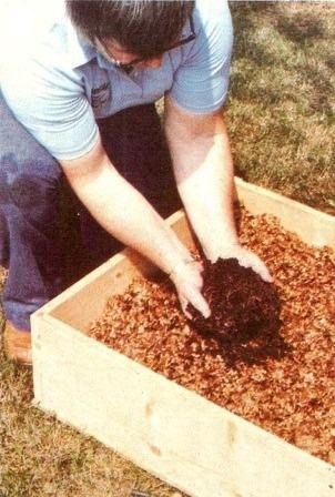 A Step By Step Guide To Vermicomposting With Images