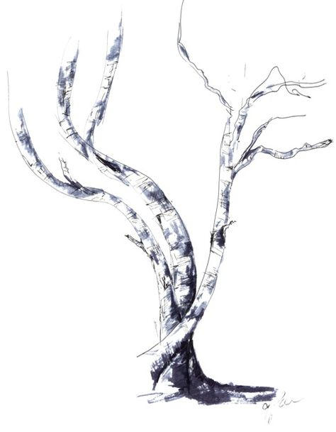 Tangled, White Birch