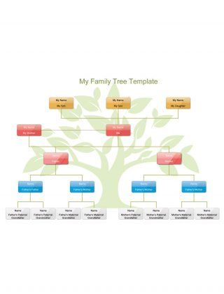 Download Family Tree Template 17 Family Tree Template Family Tree Template Word Family Tree Diagram