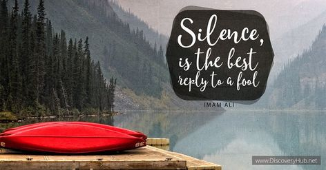 Silence is the last reply to a fool #quotesdaily #quotesaboutlife #motivationalquotes