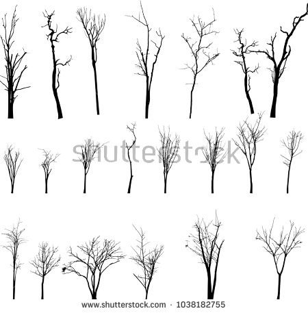 Dead Tree Without Leaves Vector Tree Silhouette Leaves Vector Vector Trees
